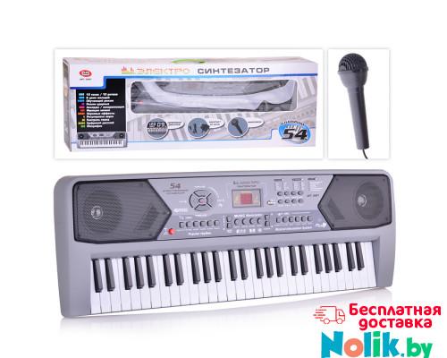 Синтезатор детский с микрофоном 54 клавиши, от сети и батареек, размер (74х26х12 см). Арт. 0891 в Минске